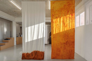 Meryl Yana Explores Materiality And Touch Through Her Residency At The Museum Of Goa